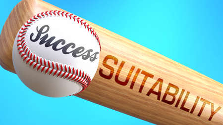 Success in life depends on suitability - pictured as word suitability on a bat, to show that suitability is crucial for successful business or life., 3d illustration