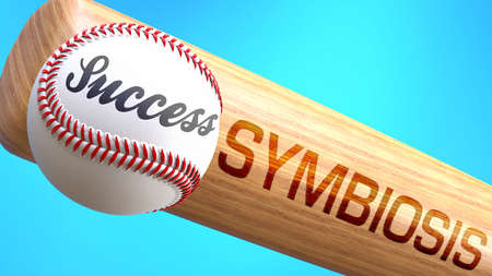 Success in life depends on symbiosis - pictured as word symbiosis on a bat, to show that symbiosis is crucial for successful business or life., 3d illustration