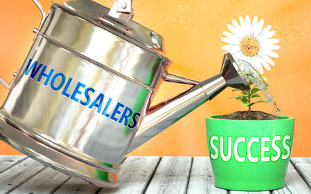 Wholesalers helps achieve success - pictured as word Wholesalers on a watering can to show that it makes success to grow and it is essential for profit in life, 3d illustration 免版税图像