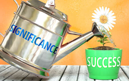 Significance helps achieve success - pictured as word Significance on a watering can to show that it makes success to grow and it is essential for profit in life, 3d illustration 免版税图像