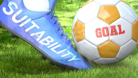 Suitability and a life goal - pictured as word Suitability on a football shoe to symbolize that Suitability can impact a goal and is a factor in success in life and business, 3d illustration