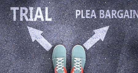 Trial and plea bargain as different choices in life - pictured as words Trial, plea bargain on a road to symbolize making decision and picking either one as an option, 3d illustration