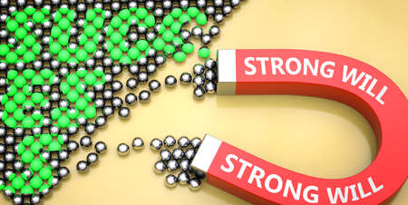 Strong will attracts success - pictured as word Strong will on a magnet to symbolize that Strong will can cause or contribute to achieving success in work and life, 3d illustration