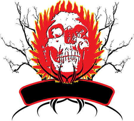 Abstract skull logo with buring wings and an area to place your own text photo