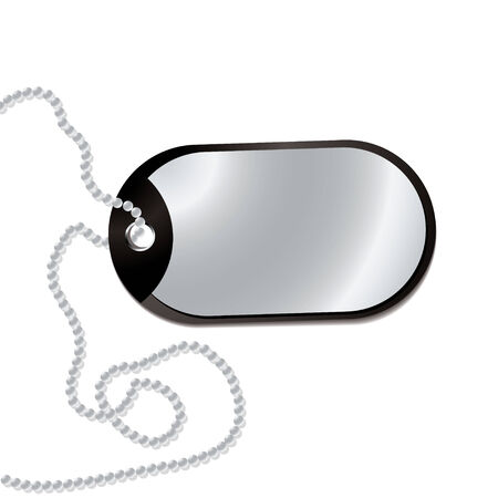 leather dog tag with metal plate and ball chain