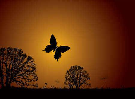 symbiotic: Sunset nature scene with butterfly and silhouette trees