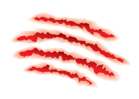 scratches: White background with red torn animal claw element