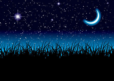 Long grass with space scape and bright cresent moon Stock Photo