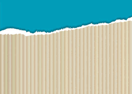 corrugated cardboard: corrugated cardboard background with torn edge and blue paper