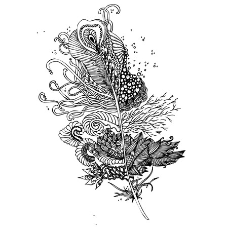 ink drawing: Feather on a white background. Vintage Artistically hand drawn stylized tribal feather. Doodle feather. Ink drawing. Coloring book. Black and White. Boho style. Illustration