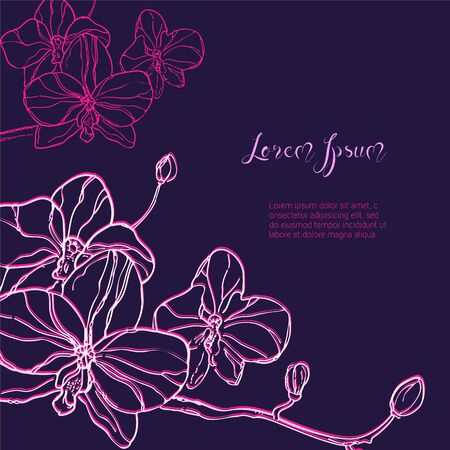 dark purple: The branch of orchids flower on dark purple Background. The hand drawn ink sketch. Vector Background with place for your text. Vector illustration. Ideal for greeting cards or invitations.