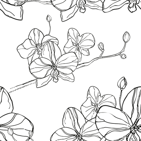 canvas print: Abstract Seamless Pattern with black orchids flower on White Background. The hand drawn ink sketch. Vector Background. Can be use for print clothes and canvas, wallpaper, greeting cards or invitations.
