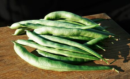 Green common beans (Phaseolus vulgaris) pods