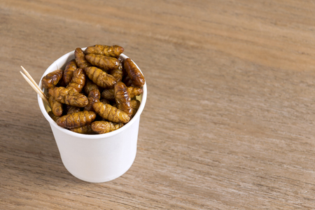 Silkworm Pupae insects for eating as food. Chrysalis silkworm deep-fried crispy snack in disposable cup for take-away home on wood background. It is good source of protein edible. Entomophagy concept. Banco de Imagens - 117183781