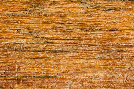 Texture of wooden use as natural. Vintage brown Wood plank for texture or background.