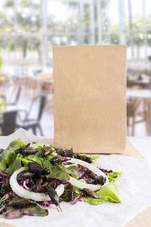 Food Insects: Crickets insect for eating as food items deep-fried on healthy salad vegetable with package bag on restaurant background, it is good source of protein edible. Entomophagy concept.
