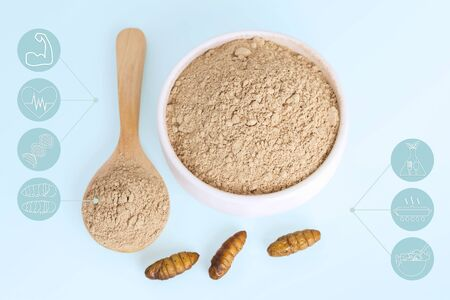 Silkworm Pupae powder items made of cooked insect meat for eating as food edible and media icon symbol nutrition on blue background, it is good source of protein food for future. Entomophagy concept.
