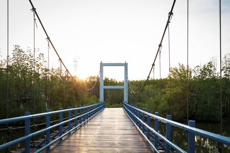 Wood suspension bridge over the river in the mangroves forest for travel with beautiful sunshine background.