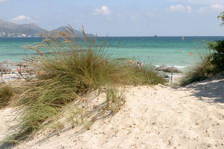 quack: Beach in Mallorca, playa de Muro in Alcudia