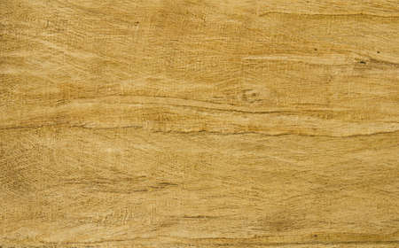Natural texture of old  wood photo