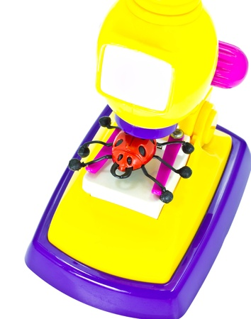 Bug and the toy microscope isolated on white background Stock Photo - 13357400