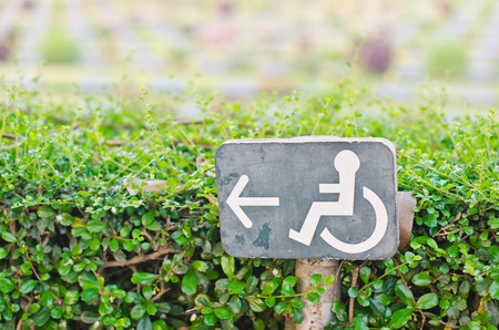 Direction signs for disabled in the park