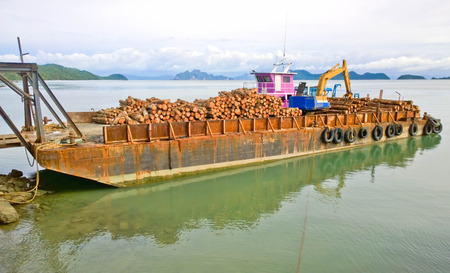 Pile of Rubber wood on the cargo ship, lumber transportation
