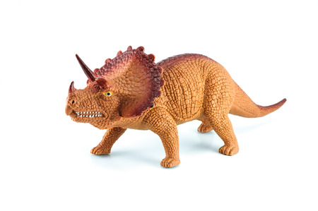 triceratops: Triceratops dinosaurs toy on white background