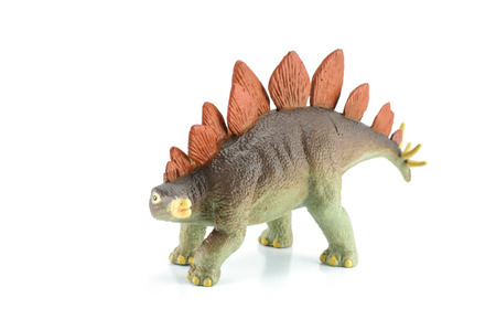 cow teeth: Stegosaurus dinosarus toy isolated white