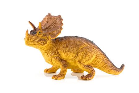 paleontology: Triceratops dinosaurs toy isolated on white Stock Photo