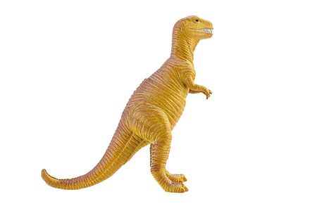 tyrannosaurus: Tyrannosaurus TRex toy isolated on white background Stock Photo