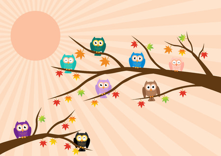 soul mate: Owls on tree in autumn season and maple leaf fall with sun ray in background. illustration flat design pastel color.