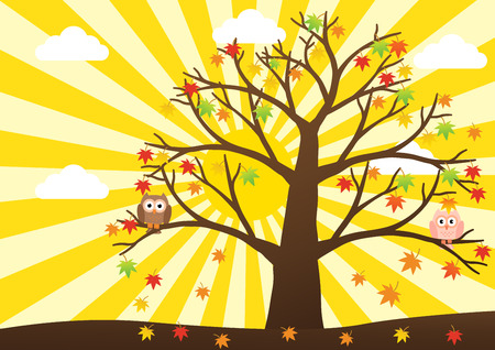 winter girl: Owls on tree in autumn season and maple leaf fall with sun ray in background. Vector illustration flat design.