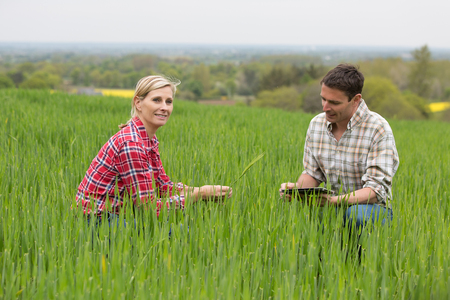 agronomist: Female farmer speaking with agronomist technician
