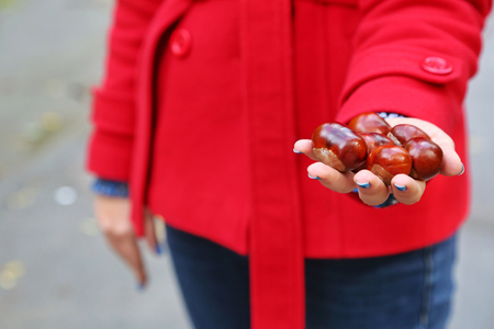 Chestnuts held by a woman in a red coat