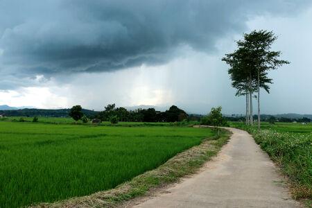 la forma en campo antes de ayer por la noche la lluvia se convierta en frío