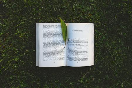 Leaf on Book on the Grass Stock fotó