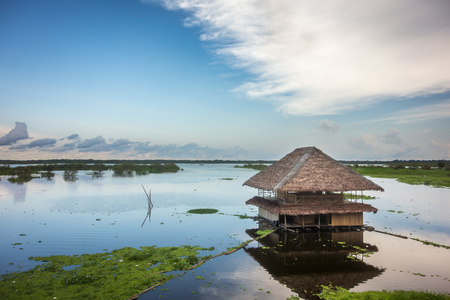 third world: A thatched-roof hut on the shallow banks of the Amazon River near Iquitos, Peru. Stock Photo