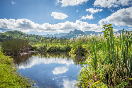 The beautiful Kawai Nui Marsh on Oahu, Hawaii, on a bright, sunny day, with the Koolau mountains visible in the background.