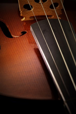 Old style Violin with little dusk Stock Photo - 9049529