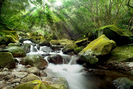 background waterfalls: Mountain River *Best for web use