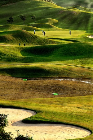 spring training: golf place with nice green