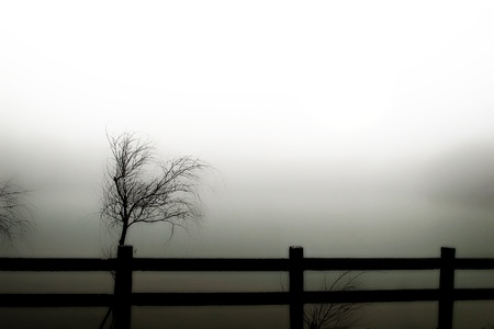 arcane: Withered, and the un-clear sun in the fog (like a painting)