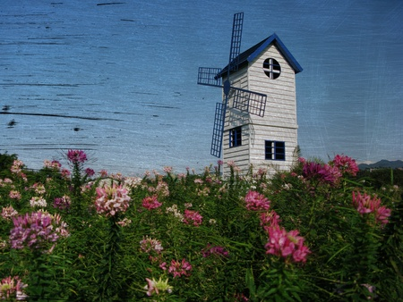 Blue windmill with folower  photo