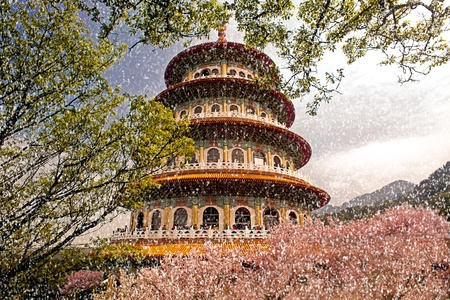 Sakura, temple and blue sky