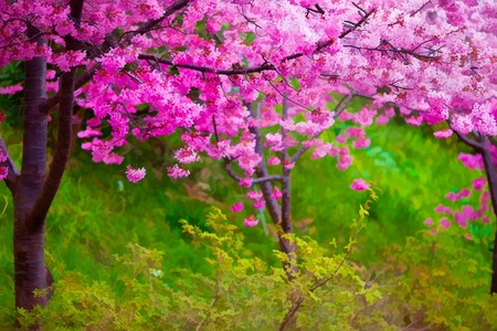 Painting style of landscape with nice sakura flower