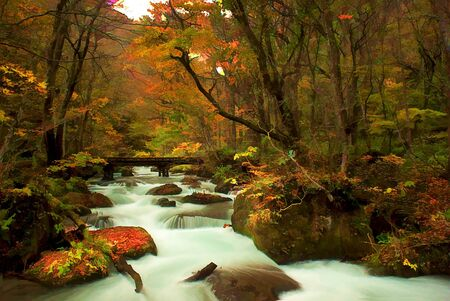 Autumn Colors of Oirase River, located at Aomori Prefecture Japan  photo