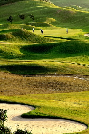 of course: golf place with nice green
