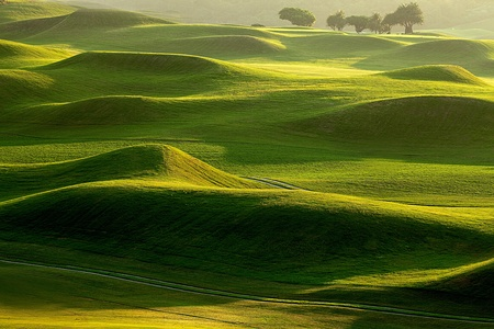 country landscape: golf place with nice green