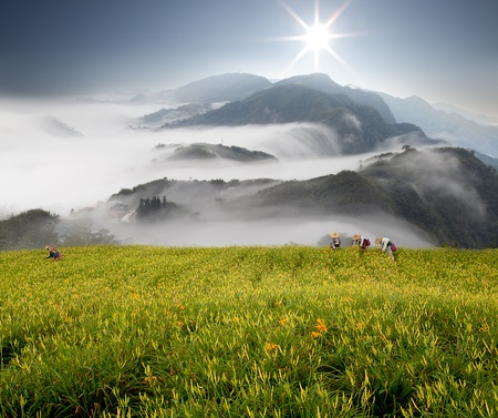 Dramatic clouds with mountain and tree Stock Photo